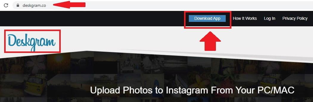 Subir fotos o vídeos a Instagram